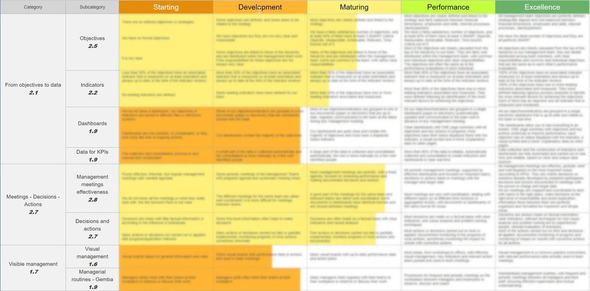 Operational Excellence maturity matrix